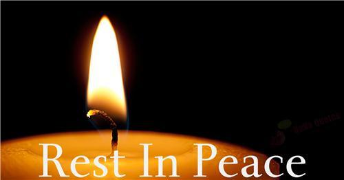 Liên Tu Sĩ VN tại Roma : Thông tin về lễ đưa chân Đức cố TGM Phaolo Bùi Văn Đọc